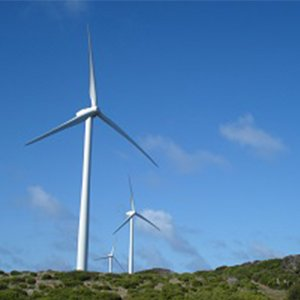 How to Achieve Excellence in Environmental Management During Wind Farm Construction