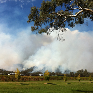 Bushfire Management Reports for Residential Subdivisions